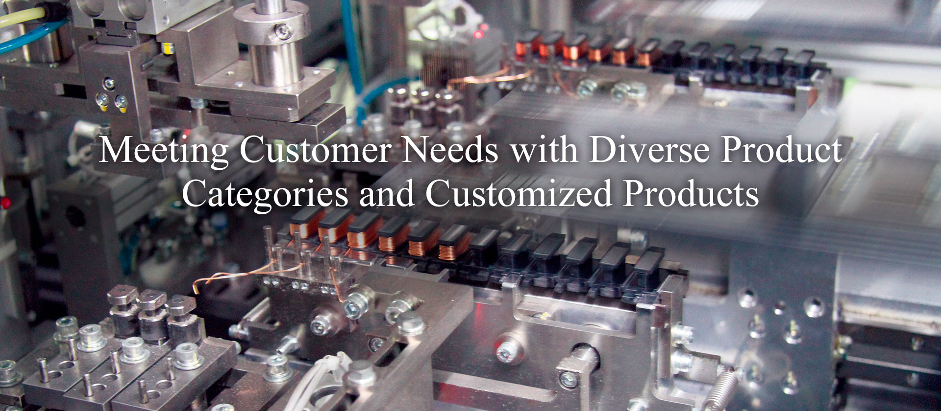 Meeting Customer Needs with Diverse Product Categories and Customized Products
